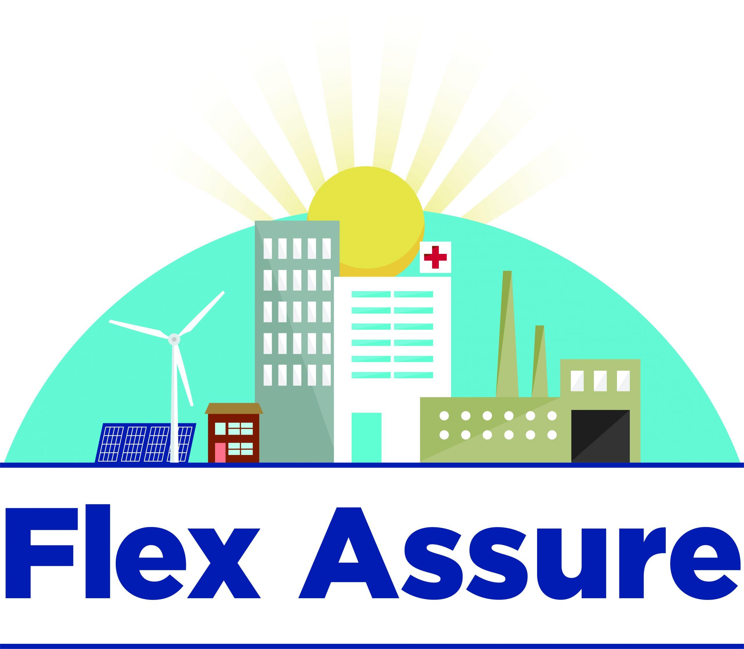 Flex Assure